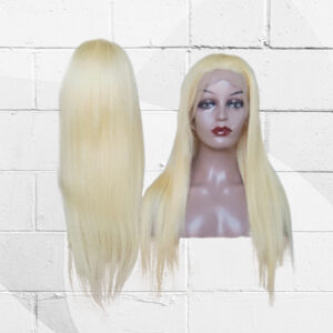 Straight Lace Front Colored Wig